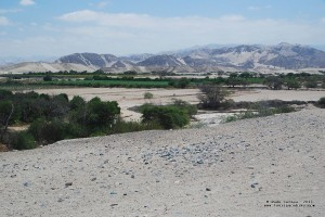 Oasis near the lost city of Huayuri