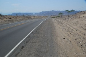 The road through the dessert