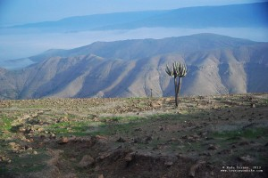 Day 12. Landscape of the Peruvian Andes. DSC_2134